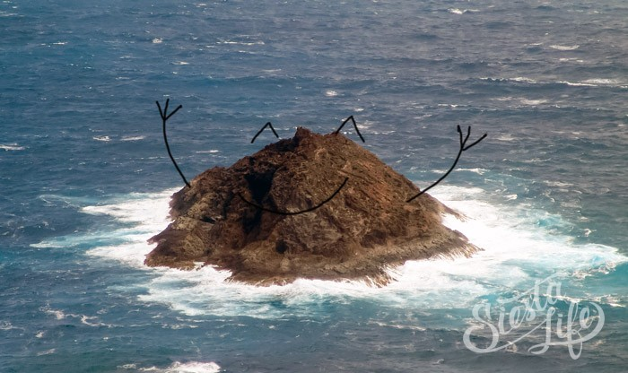 Роке-дель-Оэсте — вулканический необитаемый остров