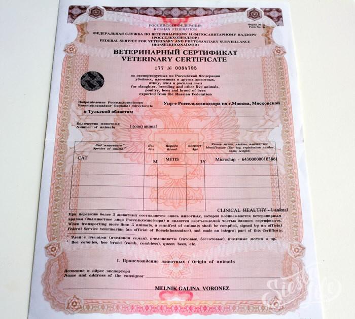 Сертификат на провоз животных через границу