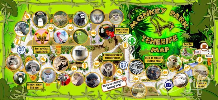 Карта Манки Парка на Тенерифе