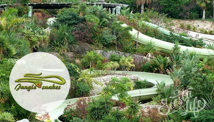 Jungle Snakes в Сиам Парке на Тенерифе